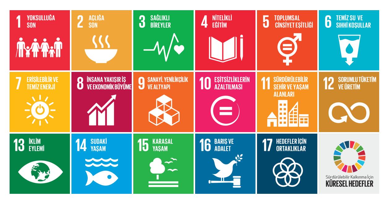 17 Maddede Dünya Liderlerinin Söz Verdiği Hedefler
