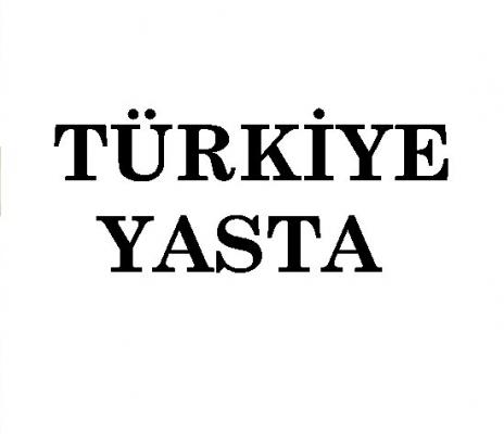 İstanbul Beşiktaş'taki bombalı terör saldırısı Türkiye'yi yasa boğdu
