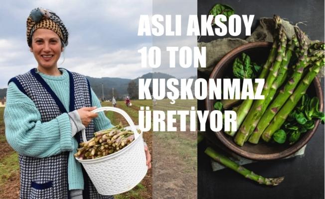 Çiftçi Kadınlar; Aslı Aksoy 40 Dönümde 10 Ton kuşkonmaz Üretiyor