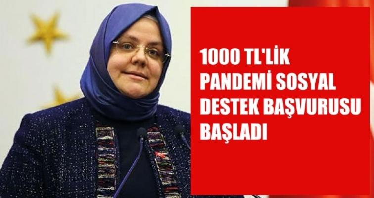 1000 TL'lik Pandemi Sosyal Destek Yardımı Başvuruları Başladı