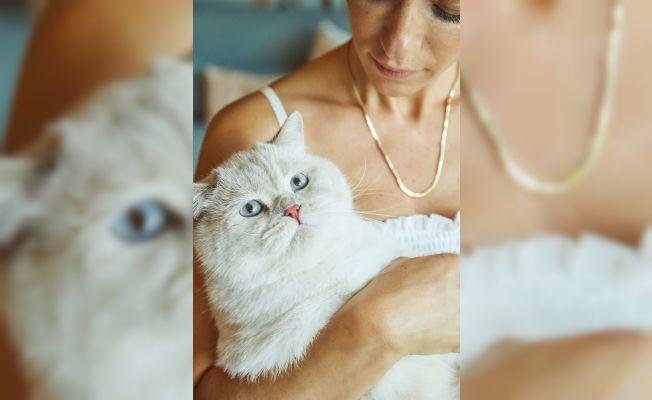 Hem size hem kedinize özel koleksiyon