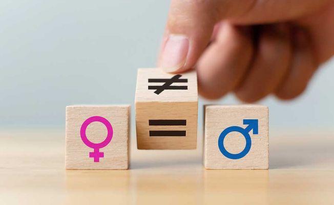Türkiye'de Ev İçinde Cinsiyet Eşitliği Olduğunu Düşünenlerin Oranı Yüzde 58