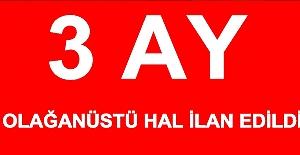 Cumhurbaşkanı: Türkiye'de 3 ay olağanüstü hal ilan edildi