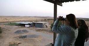 Fatma Şahin, Fırat Kalkanı harekatını dürbünle izledi