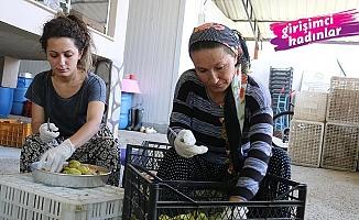Kadın girişimcilerden çok yaratıcı bir iş; Anneyle kızı 'incir cipsi' yapıp girişimci oldu