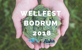 Bodrum'un ilk wellness festivali WellFest , Casa Hermanas'ta