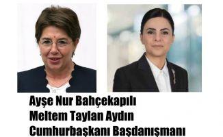 Cumhurbaşkanı Başdanışmanı Olan Ayşe Nur Bahçekapılı - Meltem Taylan Aydın Kimdir?
