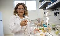 Doç.Dr.Caydaşı, hücre bölünmesiyle ilgili çalışıyor