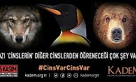 KADEM'den şiddete karşı #CinsVarCinsVar kampanyası