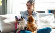 Can Dostum Sigortası, Evcil Hayvanlara Özel