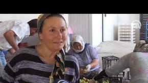 Kadın girişimciler anneyle kızı incir cipsi yapıyor